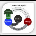 biochar_cycle